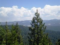 Home for sale: 42654 Bretz Point Ln., Shaver Lake, CA 93664