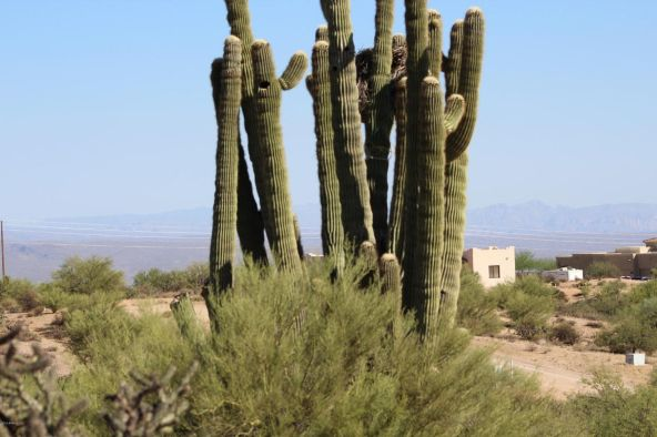 33009 N. 142nd Pl., Scottsdale, AZ 85262 Photo 5