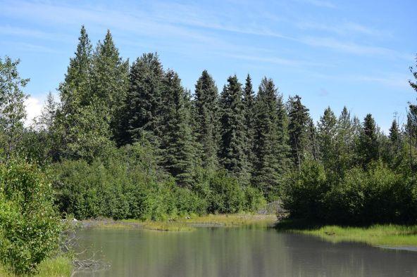 10674 E. Susitna River Rd., Trapper Creek, AK 99683 Photo 3