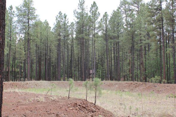 4045 Buck Springs Rd., Pinetop, AZ 85935 Photo 17