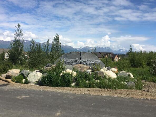 9289 E. Spring Creek Cir., Palmer, AK 99645 Photo 1