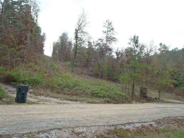 108 Buckthorn, Mountain Pine, AR 71956 Photo 10