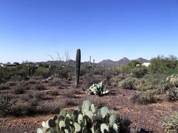 61xx E. Fleming Springs Rd. E, Cave Creek, AZ 85331 Photo 6