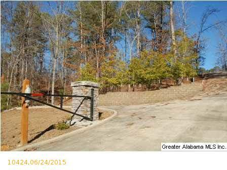 1 Blackberry Dr., Wedowee, AL 36278 Photo 13