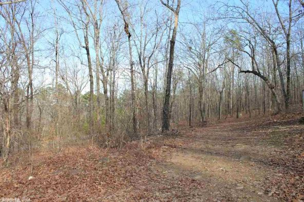 25 W. Earlene Cove, Cabot, AR 72023 Photo 6