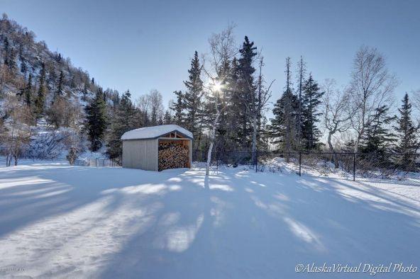 10608 Alethas Mountain Way, Anchorage, AK 99507 Photo 74
