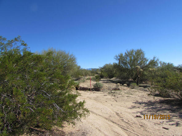 13420 N. Wild Burro, Marana, AZ 85658 Photo 6