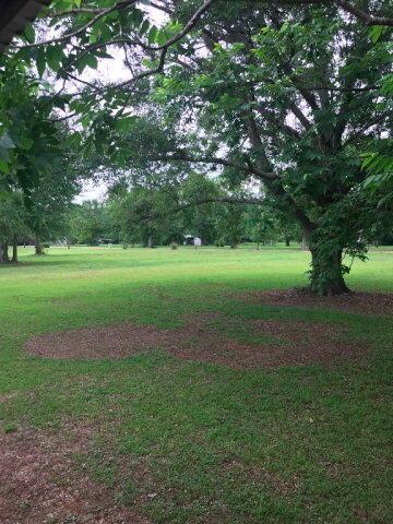 1158 Mccoy, Cottonwood, AL 36320 Photo 29