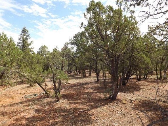 2374 Wildcat Cir., Overgaard, AZ 85933 Photo 3