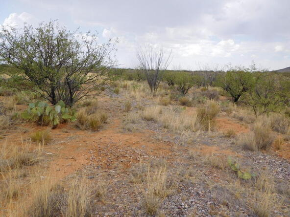 16705 S. Sierrita Mountain, Tucson, AZ 85736 Photo 3