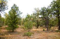 Home for sale: Half Moon Loop, Mount Carmel, UT 84755