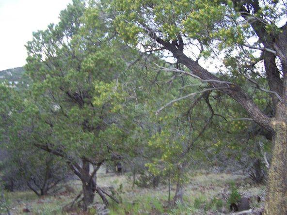 1867 E. Brookhill Rd., Williams, AZ 86046 Photo 15