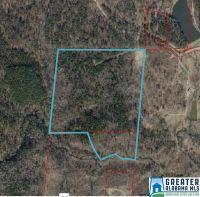 Home for sale: 0 Salt Creek Rd., Munford, AL 36268
