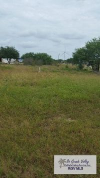 Home for sale: 0 Paredes Line Rd., Los Fresnos, TX 78566