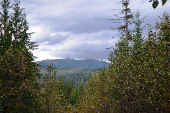 Lot 2 & 3 Rising Hawk Ridge, Sandpoint, ID 83864 Photo 13