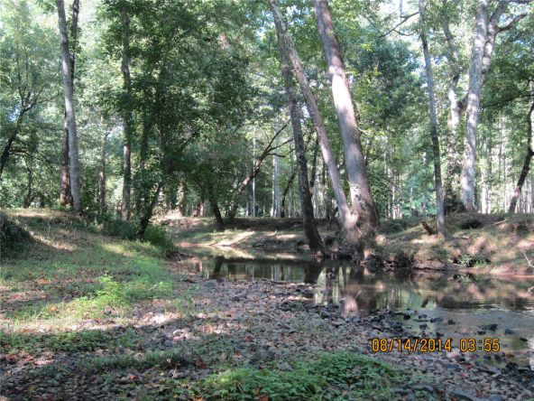 1865 County Rd. 99, Gaylesville, AL 35973 Photo 38