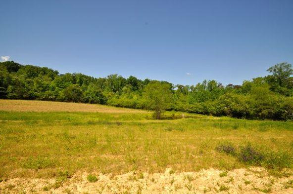445 County Rd. 1301, Cullman, AL 35058 Photo 13