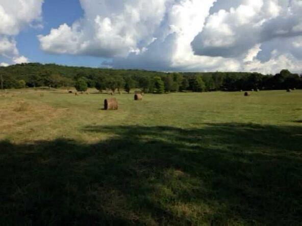 2577 Dead Horse Mountian Rd., Fayetteville, AR 72702 Photo 3