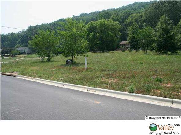 101 Lake Creek Dr., Guntersville, AL 35976 Photo 6