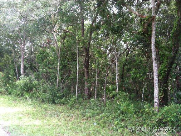 00 N.W. 120th St., Chiefland, FL 32626 Photo 4