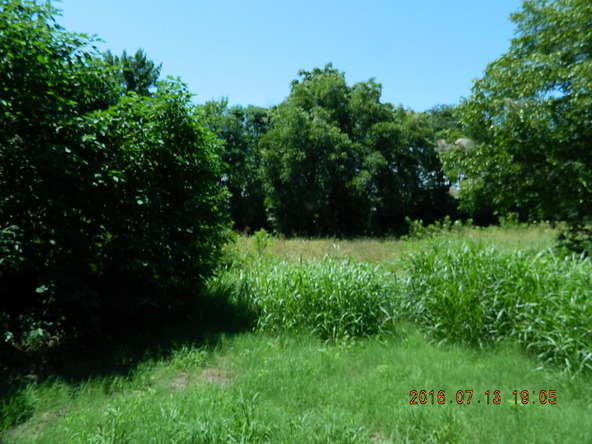 3.21 Acre Off Railroad St., Coal Hill, AR 72832 Photo 4