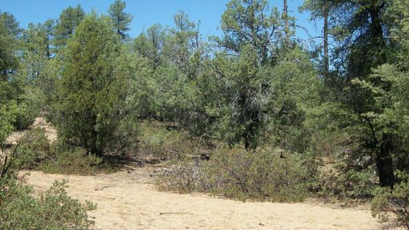 509 N. Chaparral Pines Dr., Payson, AZ 85541 Photo 16