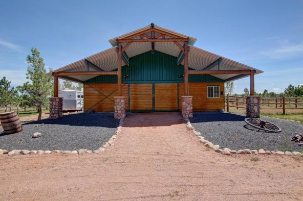 2295 Bison Ranch Trail, Overgaard, AZ 85933 Photo 8