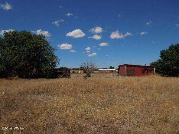 431 S. Tumbling T Dr., Springerville, AZ 85938 Photo 7