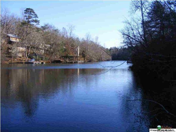 1226 County Rd. 106, Mentone, AL 35984 Photo 5