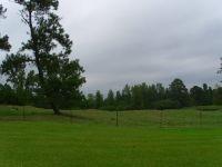 Home for sale: 4643 County Hwy. 47, Blountsville, AL 35031