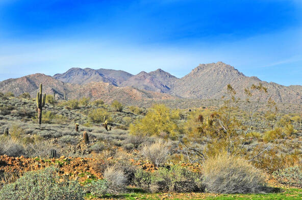 14340 E. Desert Tortoise Trail, Fountain Hills, AZ 85268 Photo 38
