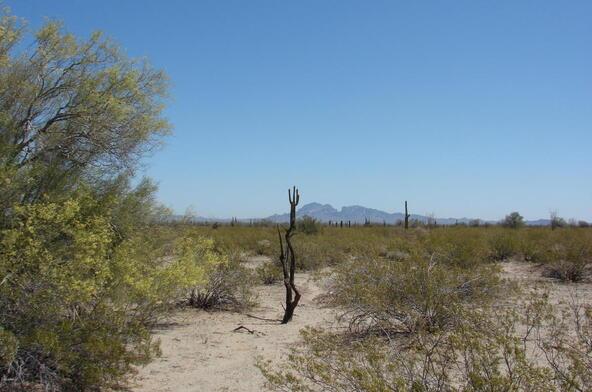 3xx N. 557th Avenue, Tonopah, AZ 85354 Photo 15