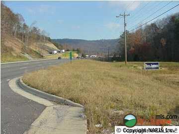760 Greenhill Blvd. N.W., Fort Payne, AL 35967 Photo 3