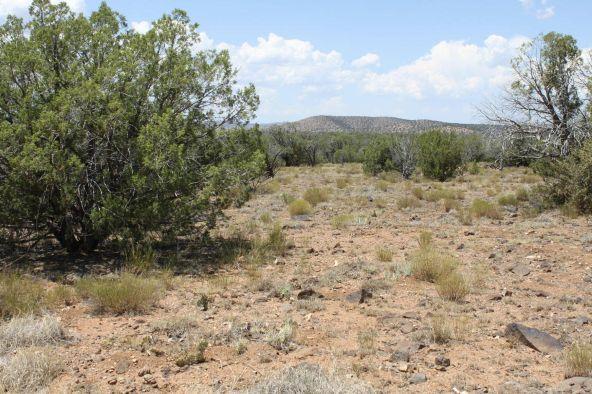3 Stockman, Ash Fork, AZ 86320 Photo 1
