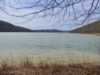 Home for sale: 000 Bord Ln., Grafton, WV 26354