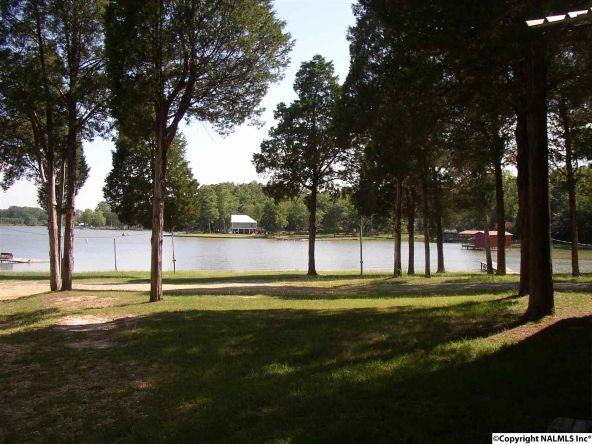 2510 Hwy. 411, Leesburg, AL 35983 Photo 5