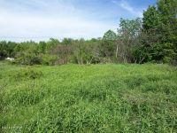 Home for sale: 218 Twin Rocks Rd., Hamlin, PA 18436