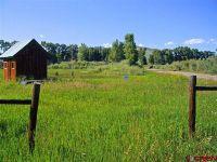 Home for sale: 41 Rockey River Ln., Gunnison, CO 81230