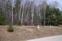 Home for sale: Lot 22 Rulau Rd., Iola, WI 54945