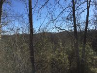 Home for sale: Lot 58 Long Spur Trl, Dandridge, TN 37725