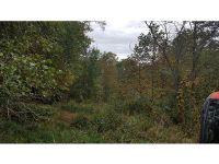 Home for sale: Tr 1 Sugar Creek Rd., Laurel Bloomery, TN 37680
