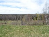 Home for sale: Near Kendall Ln., Crandon, WI 54520