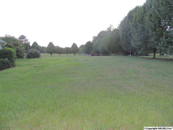 1912 County Rd. 319, Trinity, AL 35673 Photo 9
