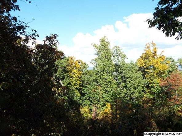 12 S. County Rd. 89, Mentone, AL 35984 Photo 4