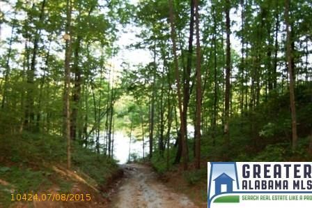 9 Rock Creek Co Rd. 4312, Wedowee, AL 36278 Photo 4