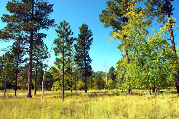 Lot 5, Powder House Trail, Lead, SD 57754 Photo 21