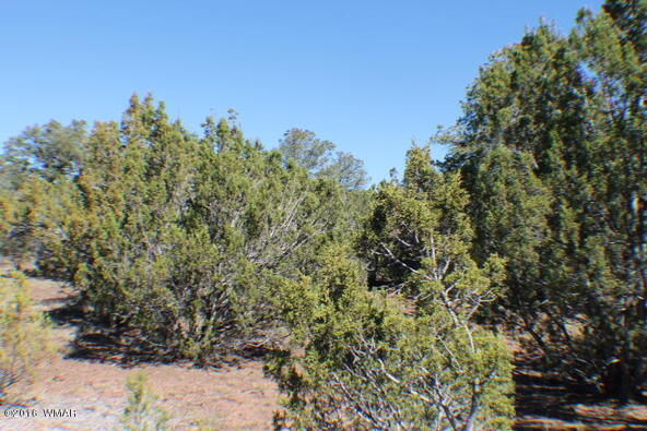 8 Acres Off Of Acr N. 3114, Vernon, AZ 85940 Photo 10