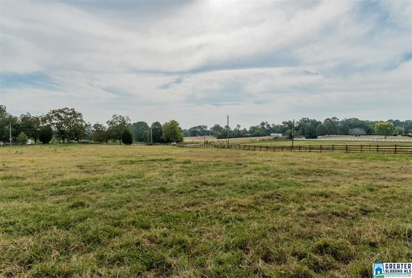 4075 Lindsey Loop Rd., Bessemer, AL 35022 Photo 19