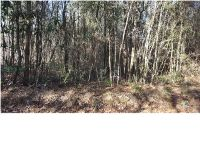 Home for sale: 0 S. & R Rd., Axis, AL 36505