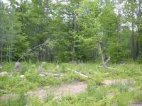 Home for sale: Tbd Whitetail, Tipler, WI 54542